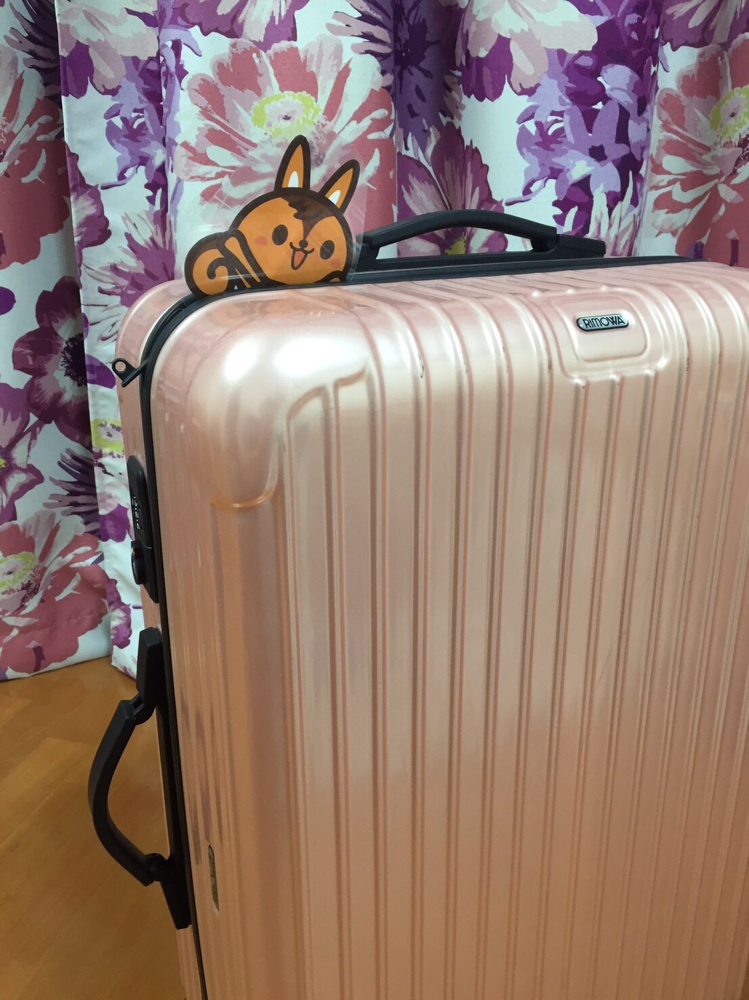 スーツケースにこっそり