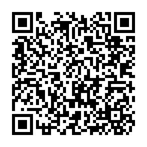 署名用紙PDF表示用QRコード